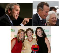 Presidential Bushes